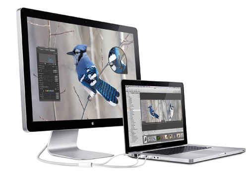 Apple Unveils 24-inch LED Cinema Display